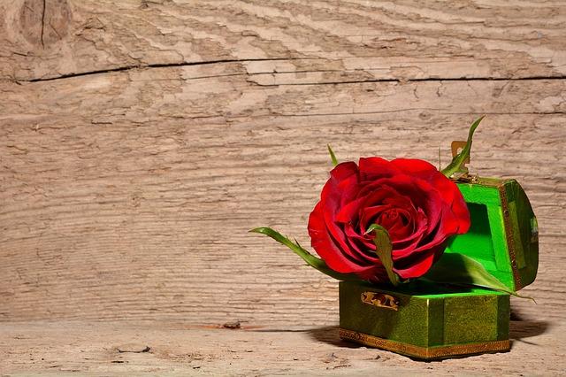 krabička s růží